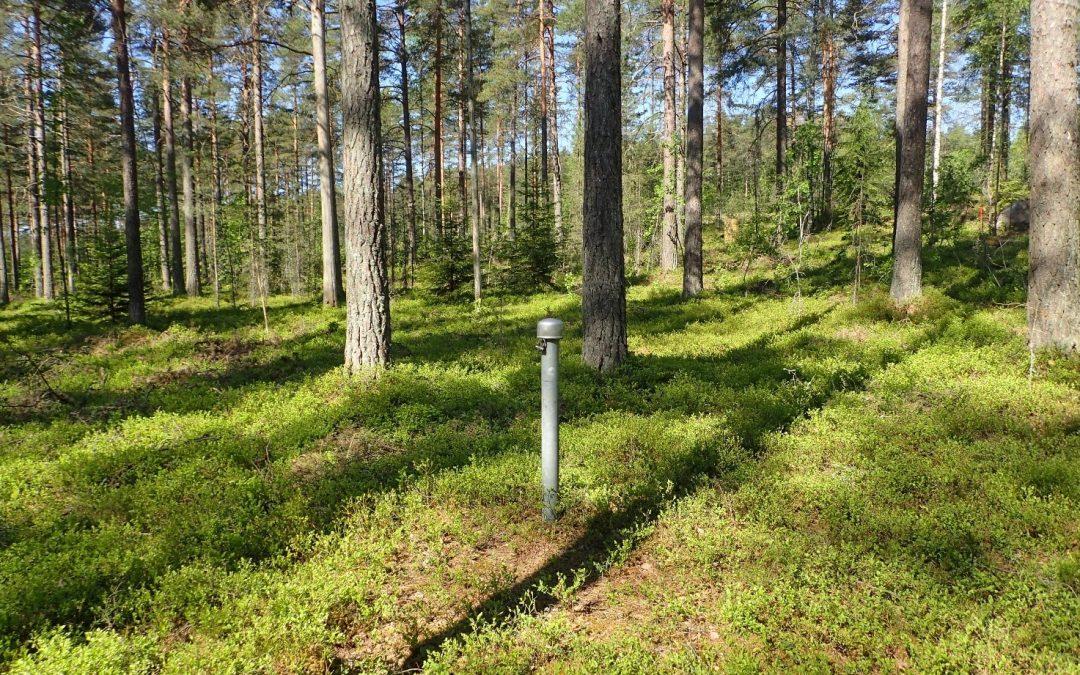 Grundvattnen i Lojo är huvudsakligen i gott skick – effekterna av halkbekämpningen kan skönjas