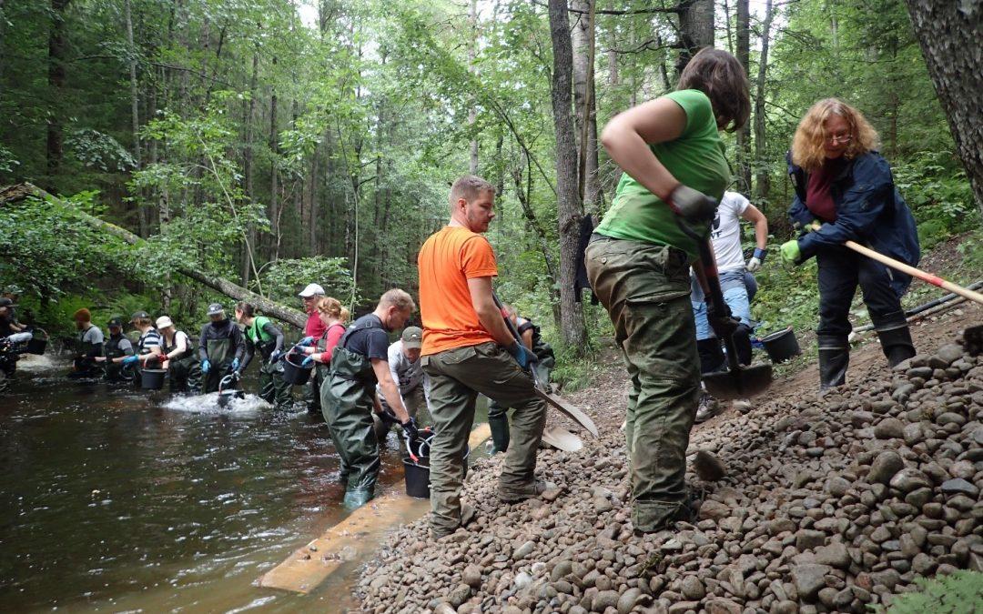 Tule mukaan talkoisiin Siuntionjoen Brännmalmsbäckenin purolle!
