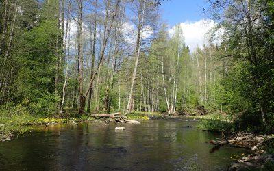 Karkkilan Vesistöt – avoin yleisötilaisuus 5.11. klo 18–20, Karkkilasali, Anttilankatu 2–4, Karkkila