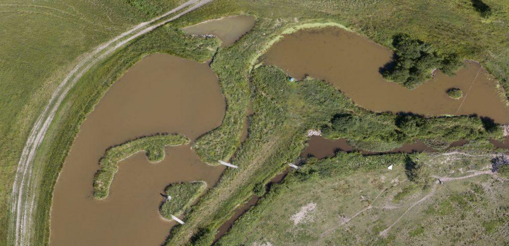 Från Vattenskyddets effektiveringsprogram kom över 800 000 euro till restaureringen av vattendrag i Västra Nyland