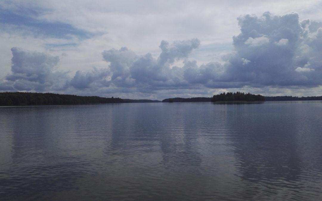 Förbättringen av tillståndet i Hiidenvesi sjö har mattats av
