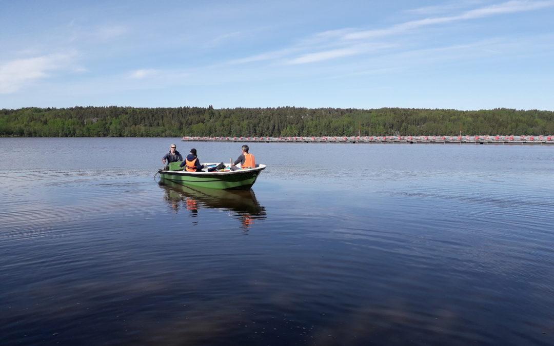 En ny undersökning av näringsnivåerna ska reda ut den inre och yttre belastningen i Hiidenvesi sjö