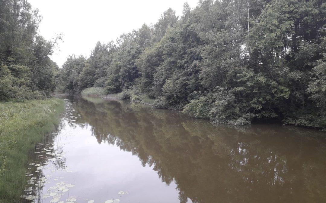 Aktuell information om vattenkavaliteten i rinnande vatten i västra Nyland nu tillgänglig för allmänheten
