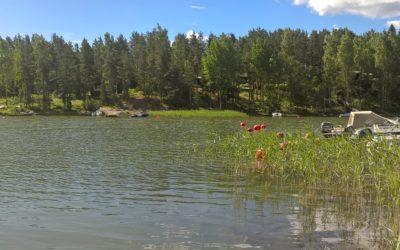 LINKKI-hankkeen kuntakohtaiset yhteenvedot jätevesineuvonnan tuloksista vuosilta 2009–2019 on julkaistu Vesientila-sivulla