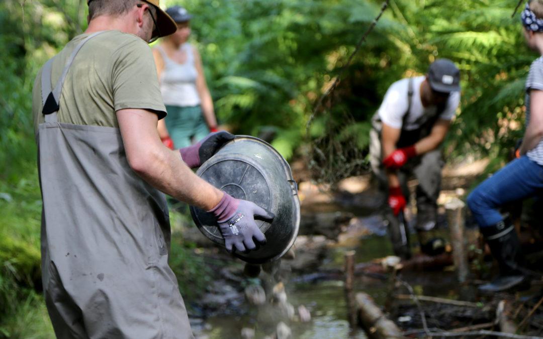 Kalatalouden ympäristöohjelmassa kalavarojen tuottavuutta vahvistetaan elinympäristöä kunnostamalla – ohjelmassa testataan uutta rahoitusmallia ympäristöhaasteiden ratkaisemiseksi