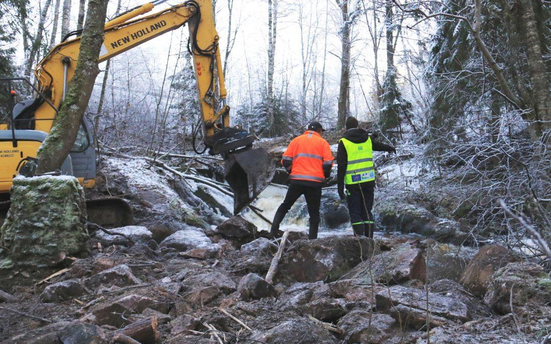 Förverkligandet av restaureringsvisionen Sjundeå å 2030 kom utmärkt igång år 2019